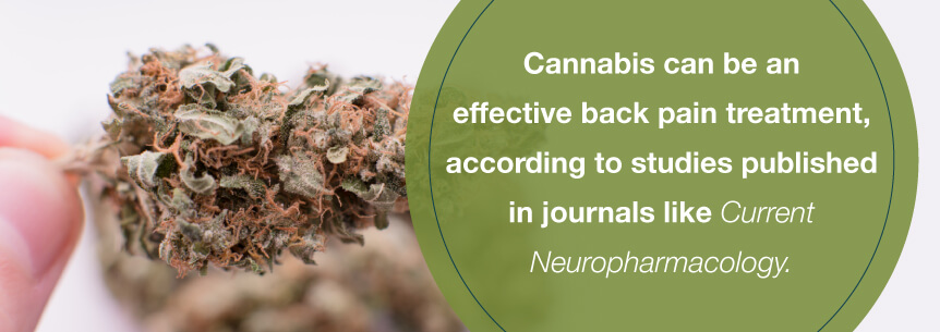 cannabis back help