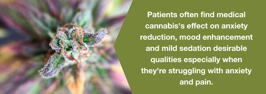 marijuana anxiety help