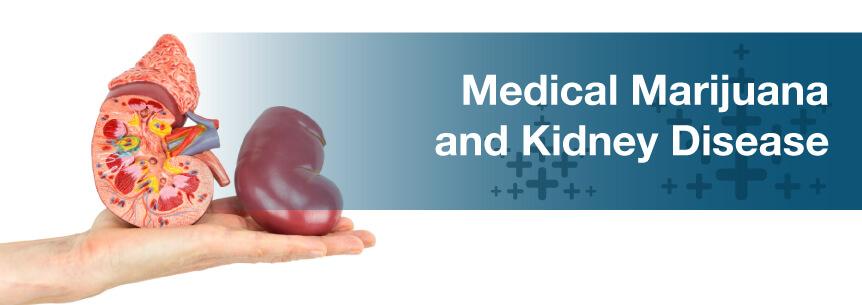 marijuana for kidney disease