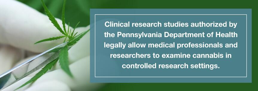pa marijuana studies