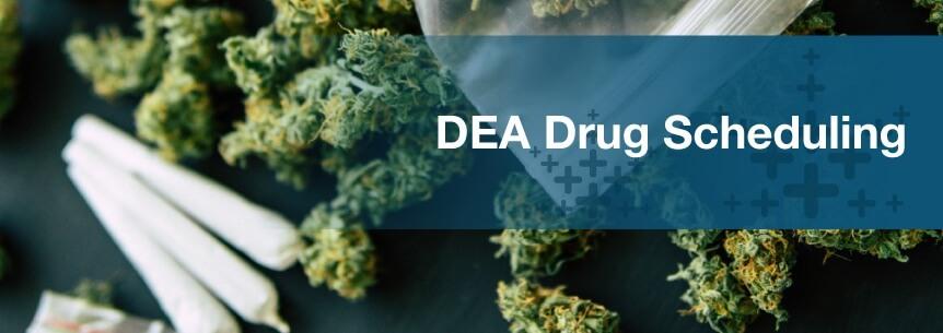 dea drug scheduling
