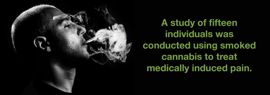 Medical Marijuana and Epididymitis | Marijuana Doctors