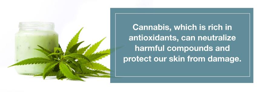 marijuana skin care