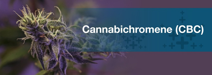 what is cannabichromene