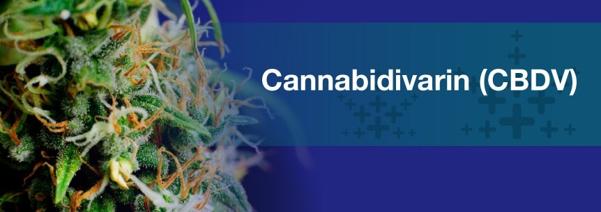 cannabidivarin cbdv