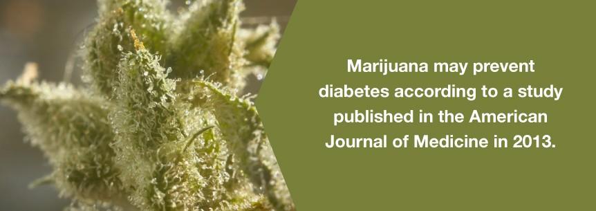 marijuana diabetes help