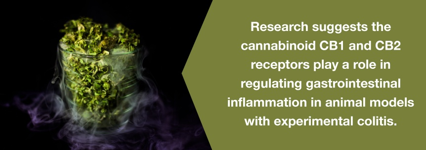 marijuana gastrointestinal help