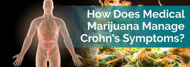 How Does Medical Marijuana Manage Crohn's Symptoms