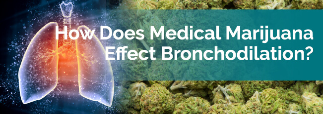 How Does Medical Marijuana Effect Bronchodilation?