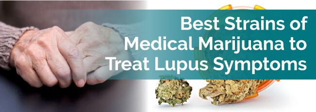 Best Strains of Medical Marijuana to Treat Lupus Symptoms