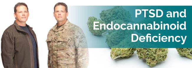 PTSD & Endocannabinoid Deficiency
