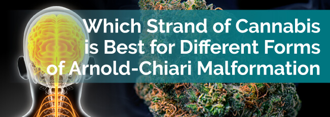 Which Strain of Cannabis Is Best for Different Forms of Arnold-Chiari Malformation?