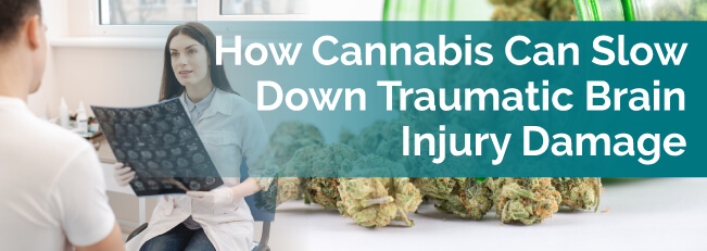 How Cannabis Can Slow Down Traumatic Brain Injury Damage