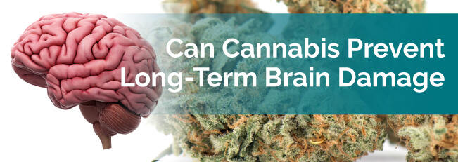 Can Cannabis Prevent Long-Term Brain Damage?