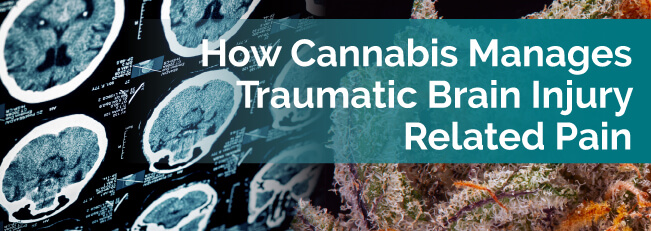 How Cannabis Manages Traumatic Brain Injury-Related Pain