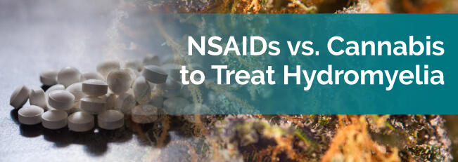 NSAIDs vs. Cannabis to Treat Hydromyelia