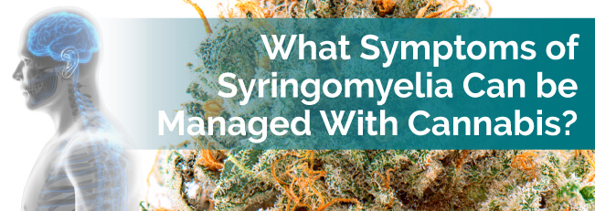 What Symptoms of Syringomyelia Can Be Managed With Cannabis?