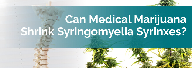 Can Medical Marijuana Shrink Syringomyelia Syrinxes?
