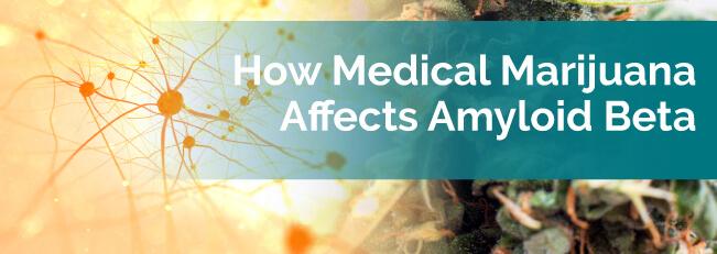 How Medical Marijuana Affects Amyloid Beta