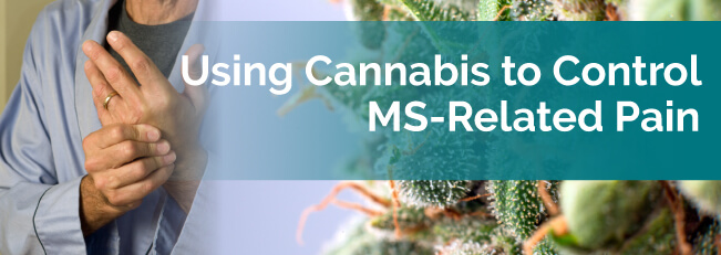 Using Cannabis to Control MS-Related Pain