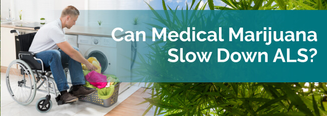 Can Medical Marijuana Slow Down ALS?