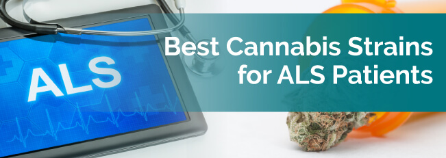 Best Cannabis Strains for ALS Patients