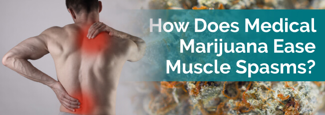 How Does Medical Marijuana Ease Muscle Spasms?