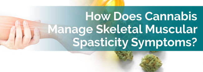 How Does Cannabis Manage Skeletal Muscular Spasticity Symptoms?