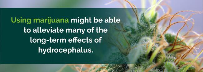 Marijuana to treat Hydrocephalus