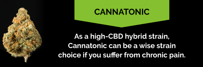Cannatonic for chronic pain