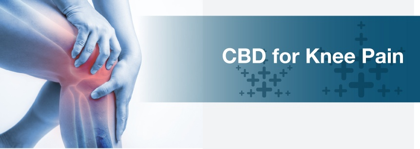 CBD for Knee Pain | Marijuana Doctors