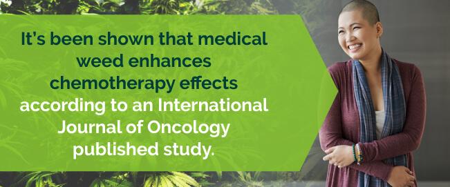 Studies show medical marijuana enhances chemo effects