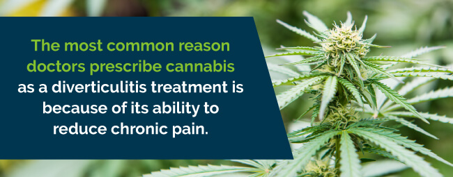 marijuana is prescribed for chronic pain