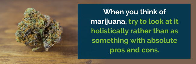 look at marijuana holistically