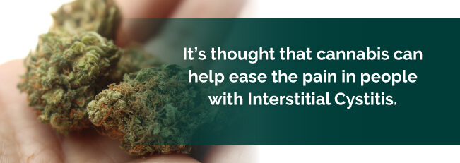 Cannabis can help ease the pain