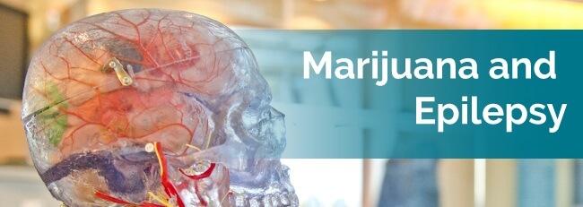 marijuana and epilepsy