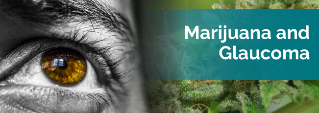 marijuana and glaucoma