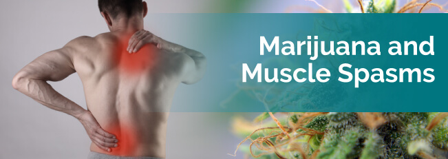 marijuana for muscle spasms