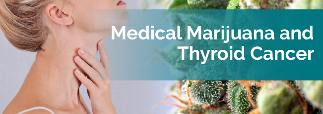 Medical marijuana and thyroid cancer