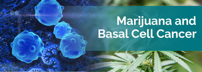 marijuana basal cell cancer