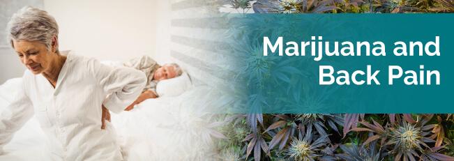marijuana for back pain