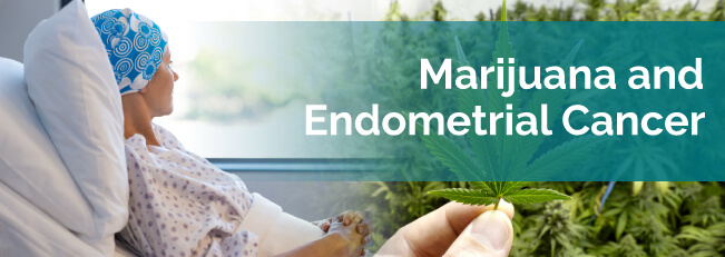 marijuana for endometrial cancer