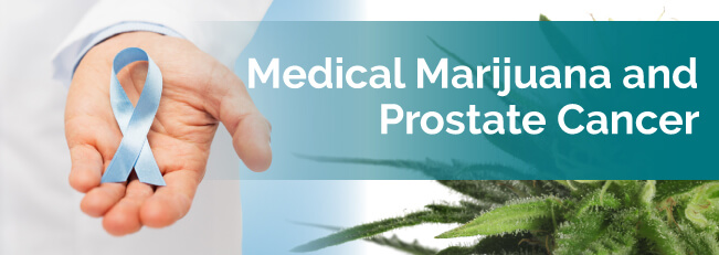 Medical marijuana and prostate cancer