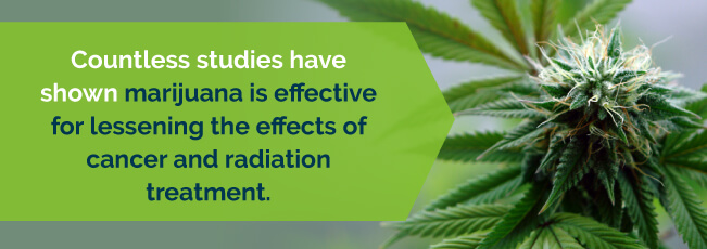 marijuana reduces the effects of cancer and radiation