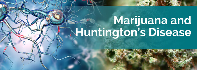 marijuana and huntingtons disease