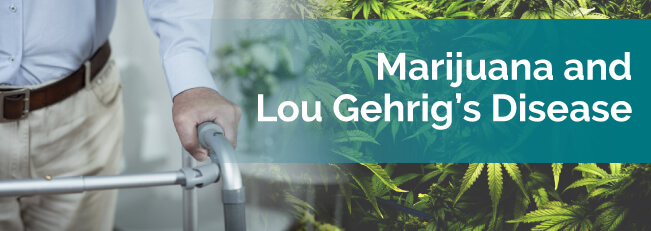 marijuana and lou gehrigs