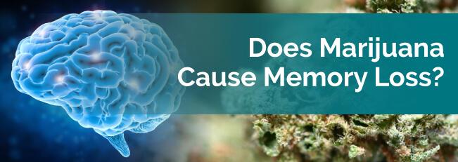 Does Marijuana Cause Memory Loss