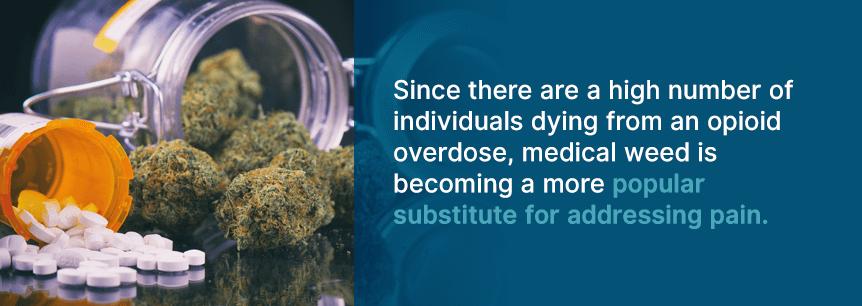 opioid alternative