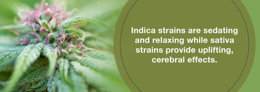 use indica strains