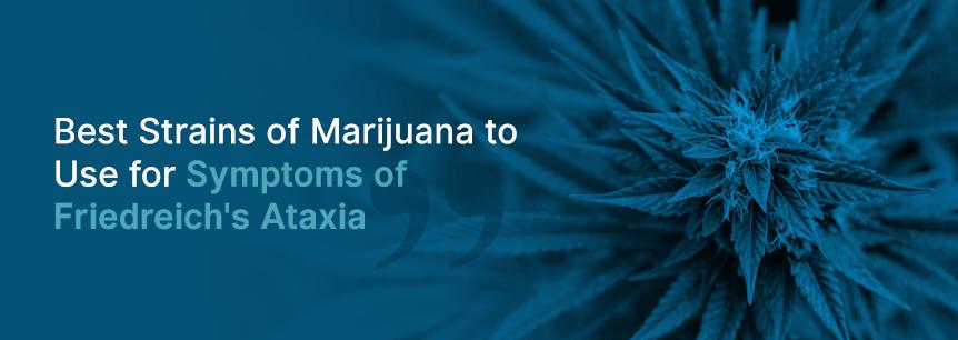 friedreich ataxia strains
